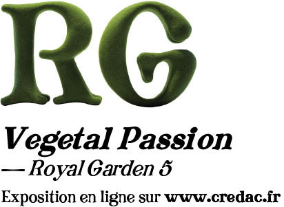 rg1.jpg