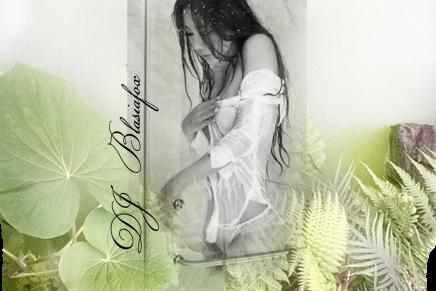 FLUXOGRAMA#23 YERBA MATE by DJ BLASIAFOX
