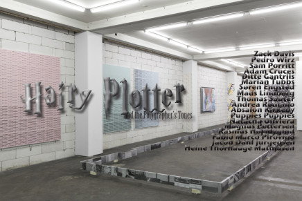 Hairy Plotter and the Polygrapher's Tones @ TOVES