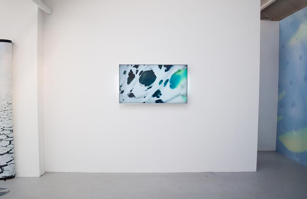 xomia-2015-kari-altmann-install-011-1000