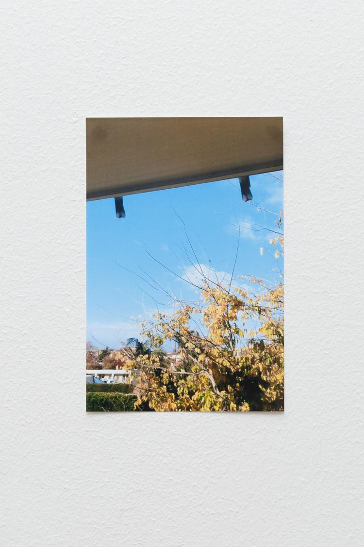 _MG_9603-Edit