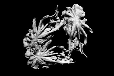 'imgn spaces o dtrrtrlztn' by Dorota Gawęda & Eglė Kulbokaitė w/ soundtrack by Daniel Iinatti