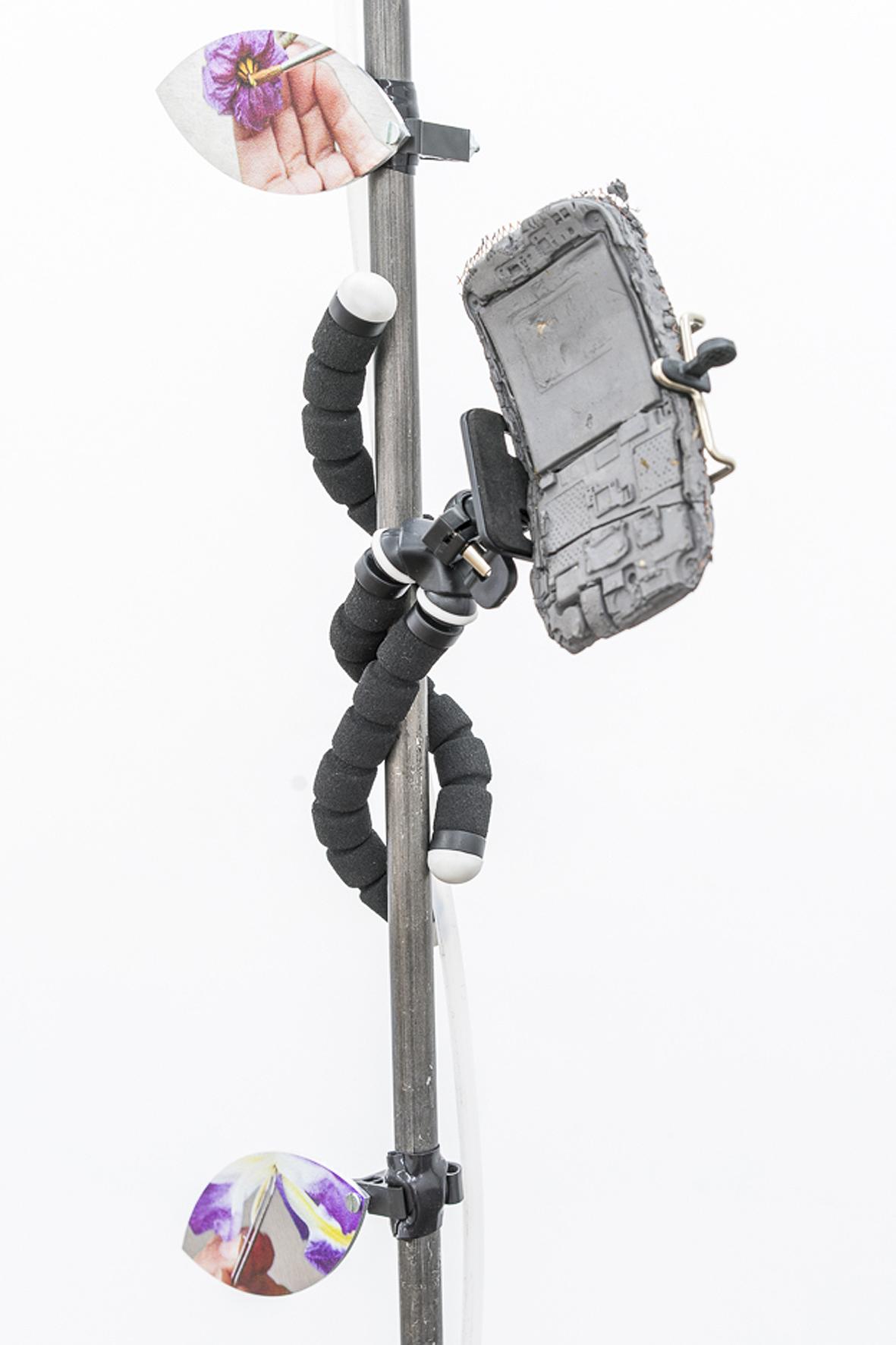 CFV2016x4260d