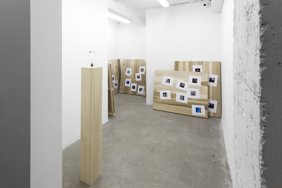 7.CC_Keith_J_Varadi_Self_Evident_Loss_Installation