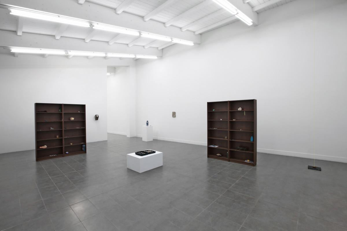 The structure of the wild (installation view) 01