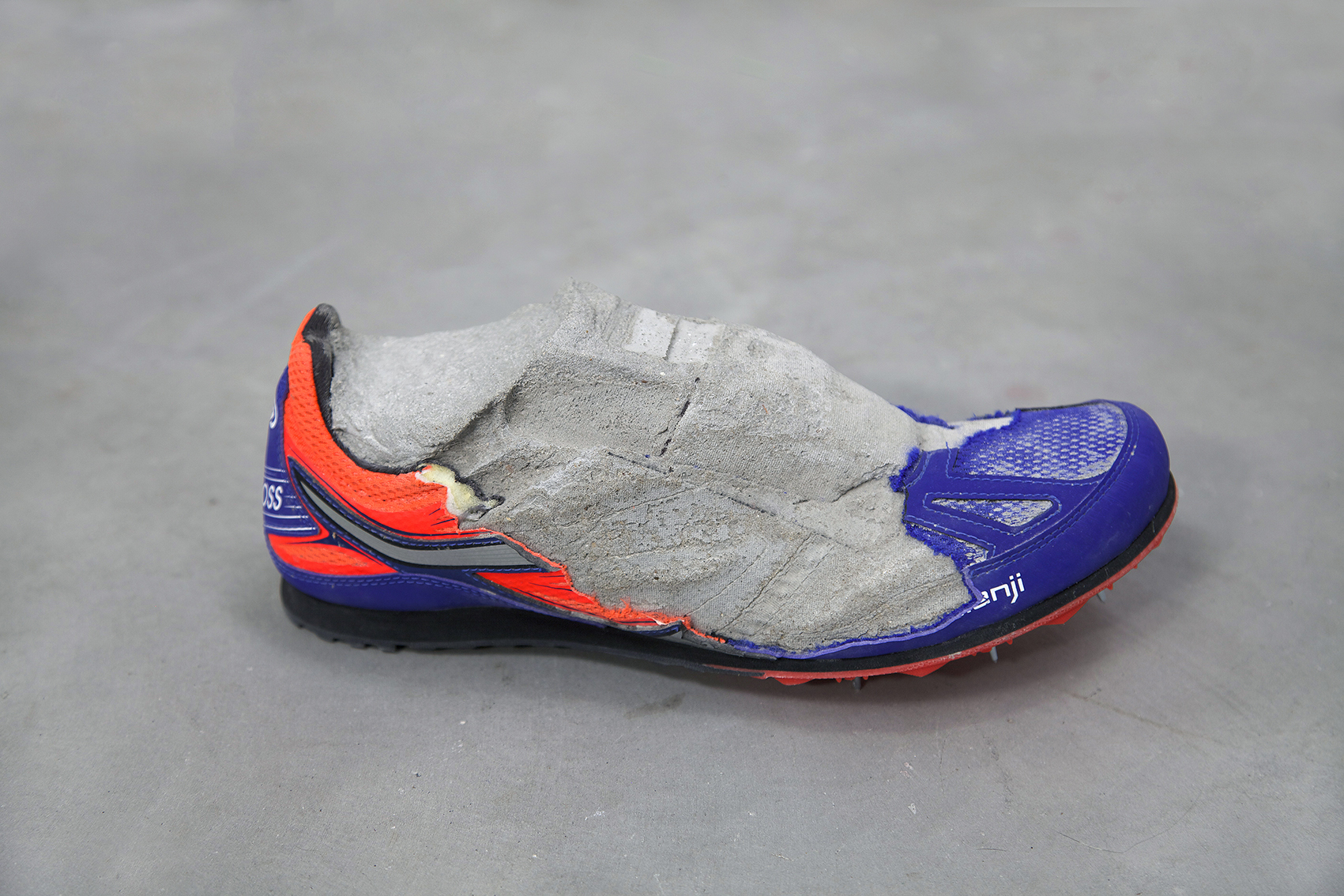 05-fossil01low